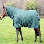 Cobra Turnout Rug