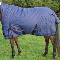 Viking Turnout Rug