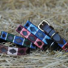 chukka dog apparel