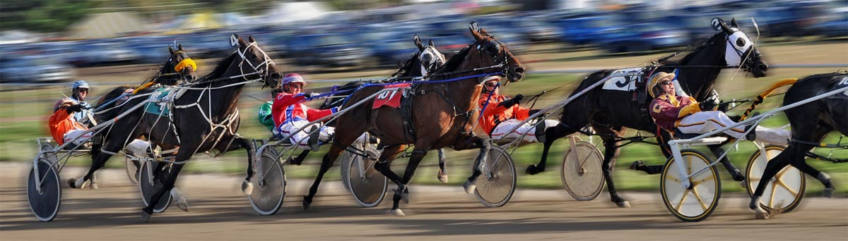 harness-racing-otb